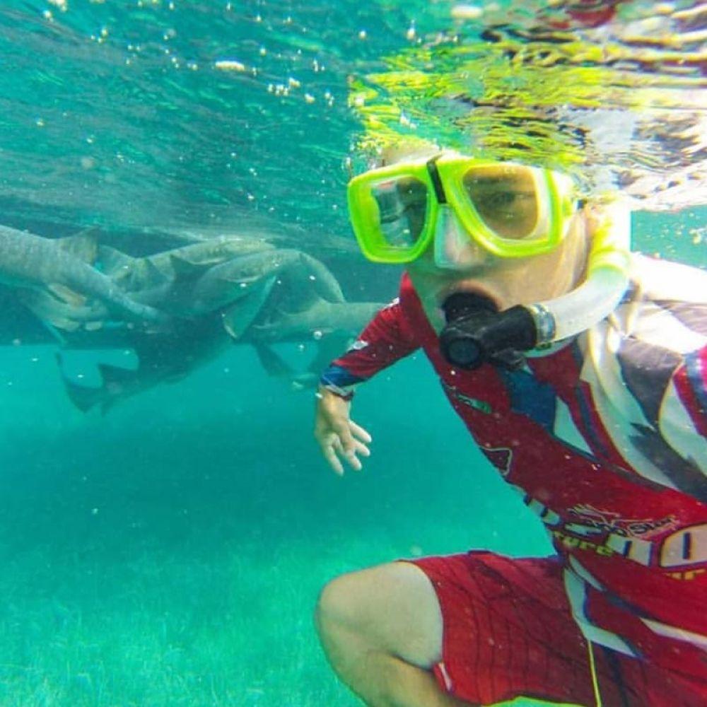 Nadando com tubarões no mar de Belize, país da América Central