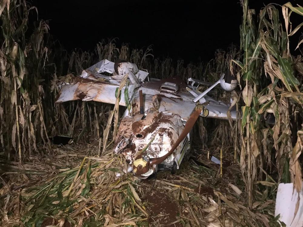 Avião de pequeno porte cai em milharal em Cascavel — Foto: Anna Flávia Nunes