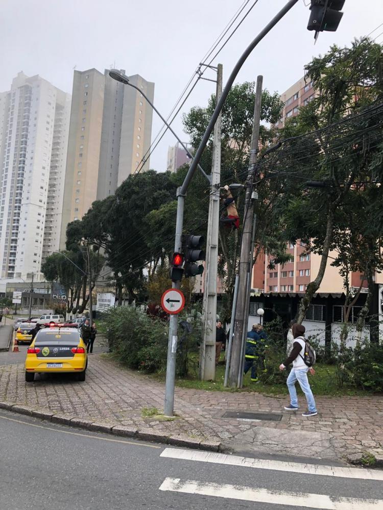 Homem fica gravemente ferido após ficar pendurado em poste de luz em Curitiba — Foto: Mariana Scoz