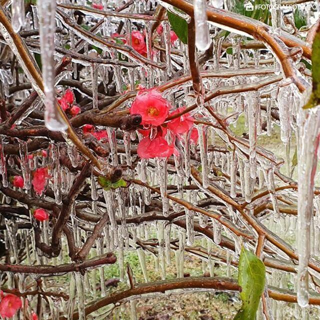 A beleza do frio congelante