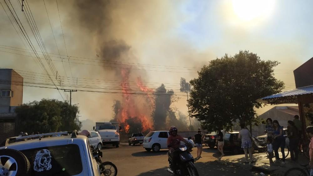 Incêndio destrói mata no Parque do Bosque em Pérola; veja o vídeo