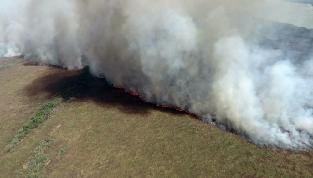 Incêndio atingiu 35 mil hectares do Parque Nacional de Ilha Grande — Foto: Divulgação/ICMBio