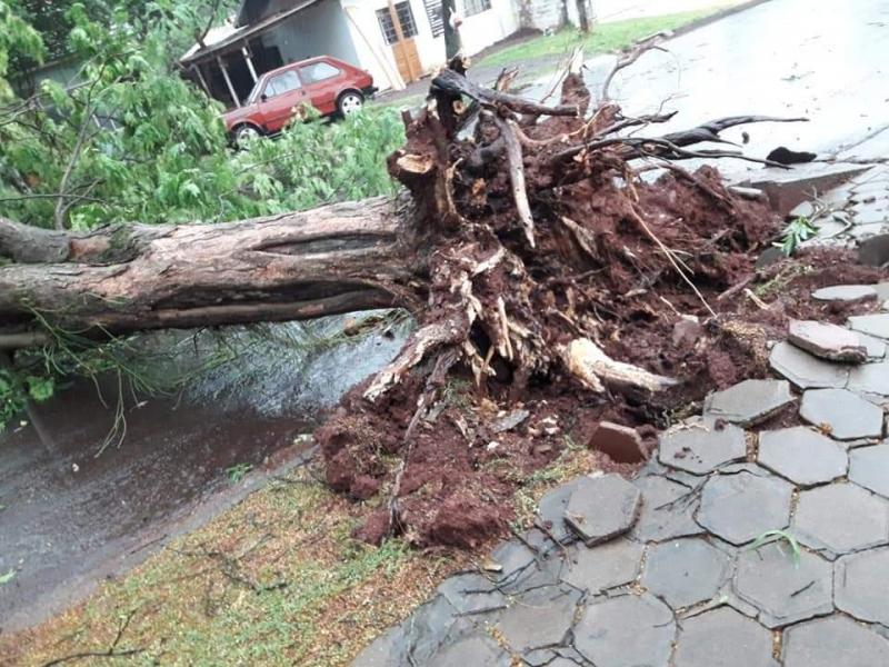 Foto: Divulgação/Toledo News