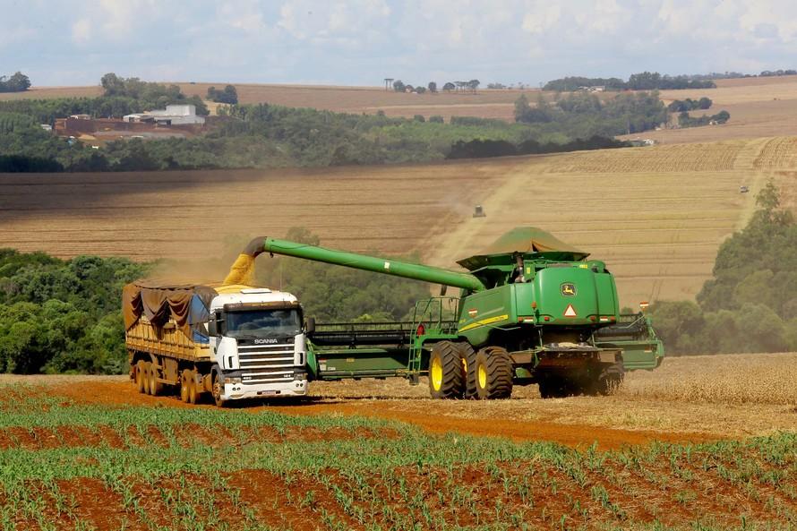Safra de grãos do Paraná deve atingir 41 milhões de toneladas