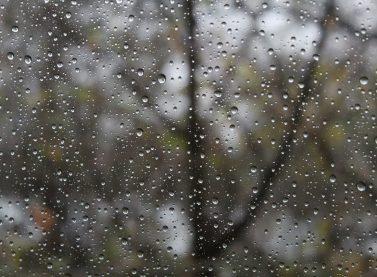 Chuva chega no Estado do Paraná após longo período de estiagem