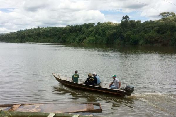 Segundo o IAP, a proibição de qualquer tipo de pesca - exceto a científica - se deu por conta da morte de aproximadamente 50 toneladas de peixes desde o início de fevereiro no Rio Piquiri — Foto: ANPr/Divulgação