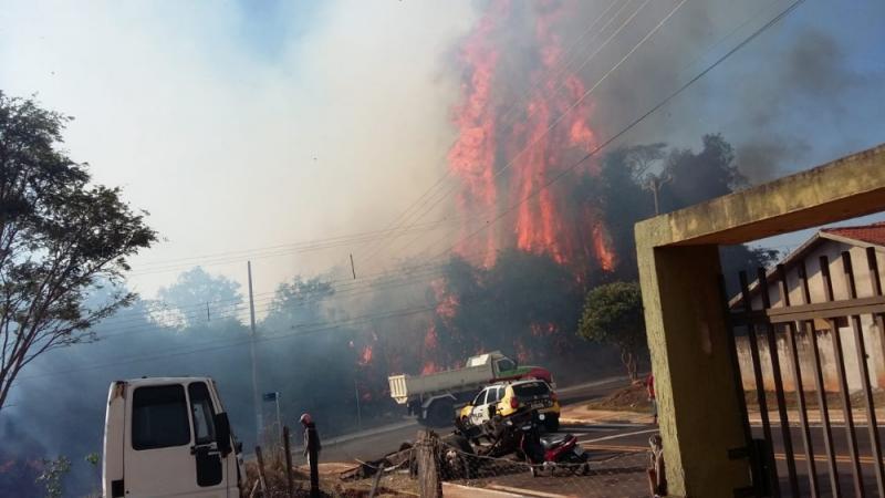 Incêndio destrói mata no Parque do Bosque em Pérola